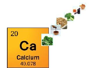 calciumfeature